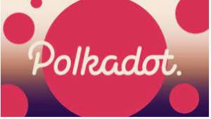 Polkadot Network.
