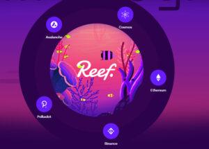 reef.finance